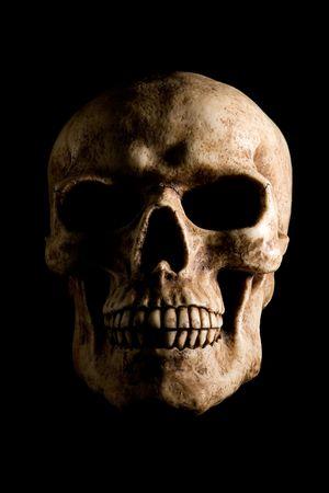 samhain: Retrato de cr�neo humano aislado sobre fondo negro.