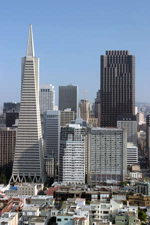 tallest: The TransAmerica Pyramid and the Bank of America tower are the two tallest buildings in San Francisco