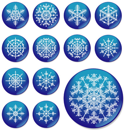Thirteen snowflakes. The vector image. Vector