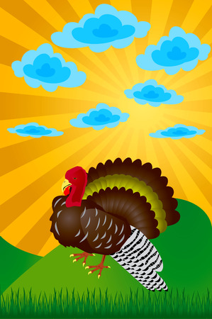 strut: Turkey. Day of thanksgiving. The vector image.