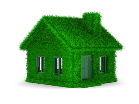 house from grass on  white background. Isolated 3D image photo