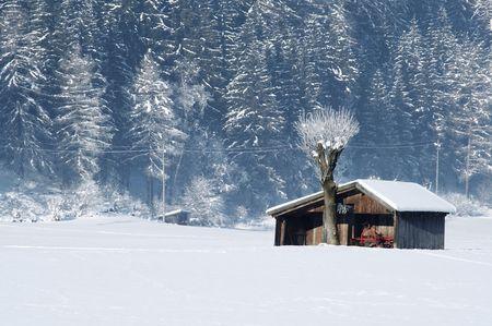 shack: Isolated shack abandoned during winter season Stock Photo