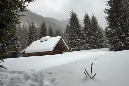 ski, hemel, helling, sneeuw, spar, boom, bomen, wit, de winter