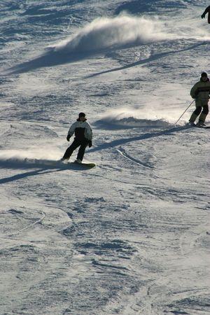 ski, sky, slope, snow, spruce, tree, trees, white, winter Stock Photo - 567314
