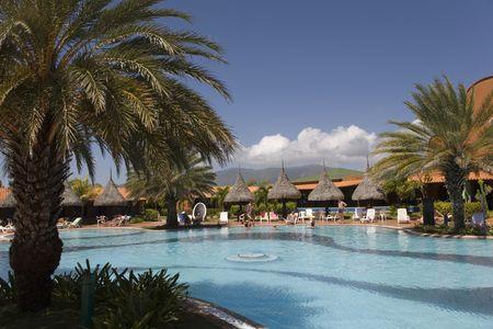 Pool, palm