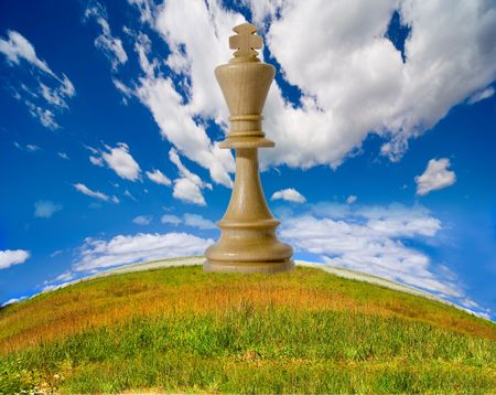feld: Chess composition on feld background