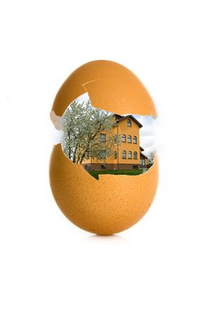 shell egg and house on white background photo