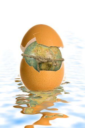 shell egg and globe on white background photo
