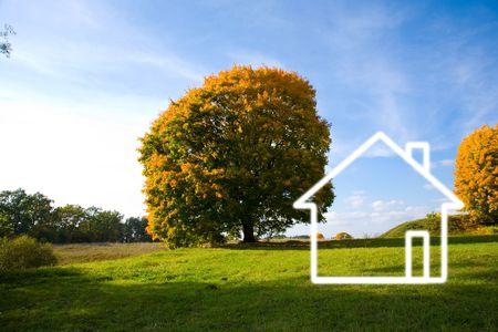 Veld landschap en beschilderde huis Stockfoto