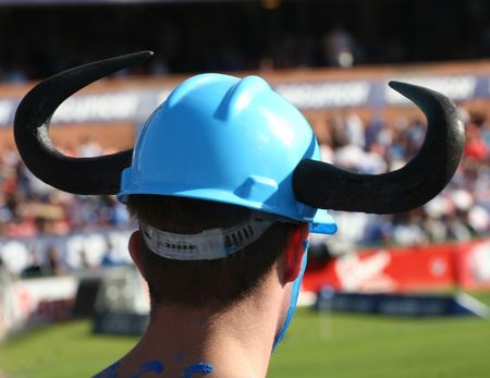 supporter: Rugby supporter wearing horns