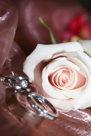 Bride and Grooms wedding rings with a pink rose