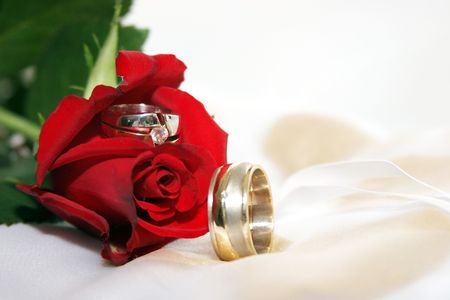 Red rose with Bride and Groom rings