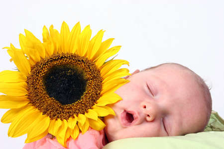 mite: Sleeping baby next to a beautiful sunflower