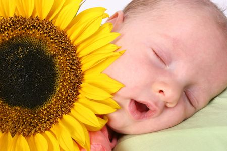 Young baby in dreamland photo