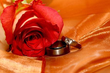 Two wedding rings next to a red rose on orange organza photo