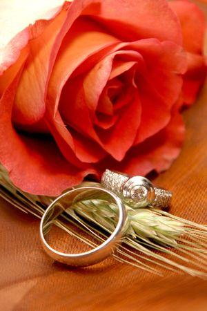 bodas de plata: Dos bodas de plata anillos de boda junto a una rosa