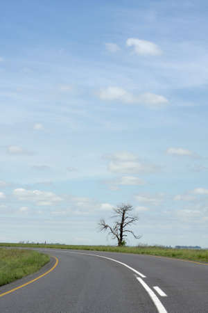 coutryside: A road in the coutryside and a blue sky