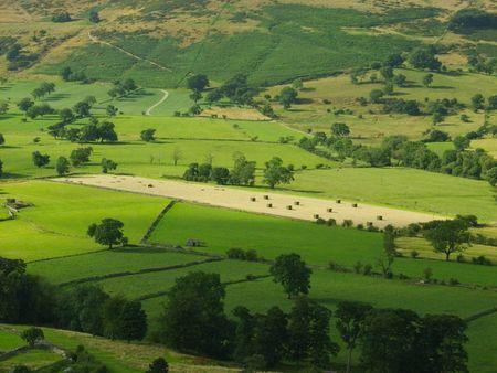 derbyshire: Fields in summer, Castleton, Peak District, Derbyshire, England