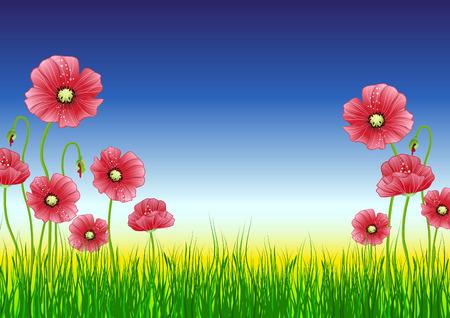 Red poppy flowers. Stock Vector - 6921709