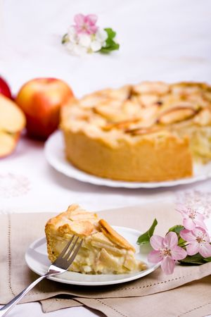 Apple pie slice with pie on background, soft focus photo