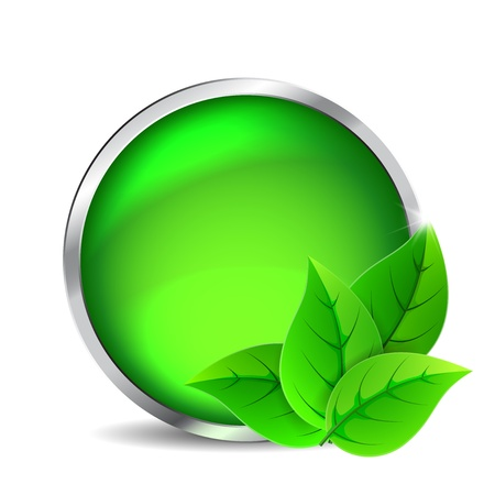 Green glass button with leaves on a white background Stock Vector - 16759736