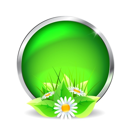 Green glass button with flowers on a white background Stock Vector - 17965157