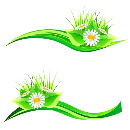 Floral design elements.  Vector illustration Stock Vector - 17965159