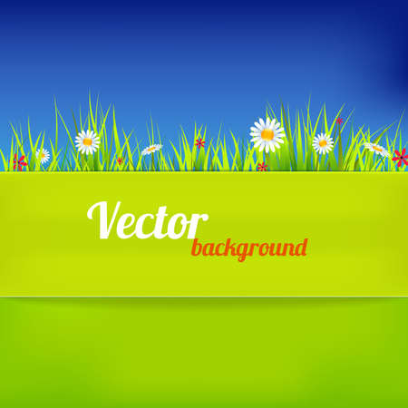 summer season: Bright background in green and blue color illustration