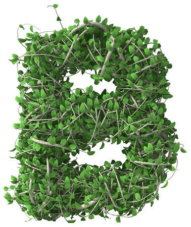 letter b: Green alphabet made of trees and leafs. Seasonal summer letter B