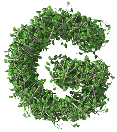 g alphabet: Green alphabet made of trees and leafs. Seasonal summer letter G Stock Photo