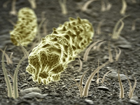 genomes: Fantasy microbes or bacteria or virus on abstract surface.  Medical and science 3d illustration