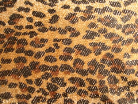 Leopard pattern for background photo