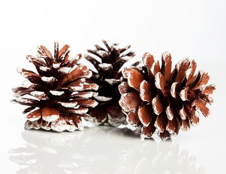 pinecone: Christmas decoration with festive pinecone Stock Photo