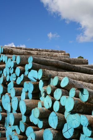 Wood pile painted blue