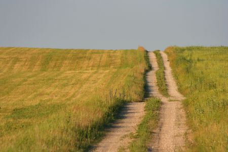 Field and path
