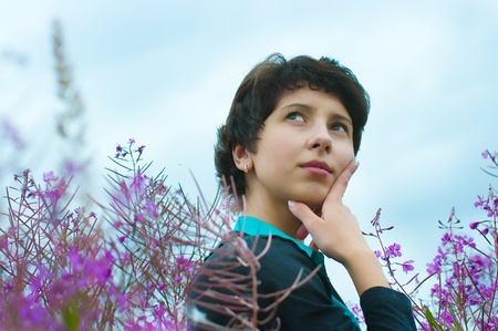 angustifolium: The image of the beautiful girl on a meadow Stock Photo