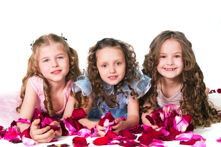 Three elegant girls on with rose-petals on a white background Stock Photo - 13443950