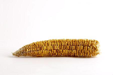 sustenance: bad corncob Stock Photo