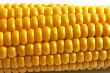 sustenance: Corn on Cob