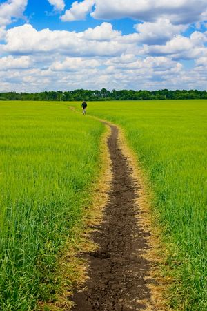 firmament: Fields, road and Sky Stock Photo