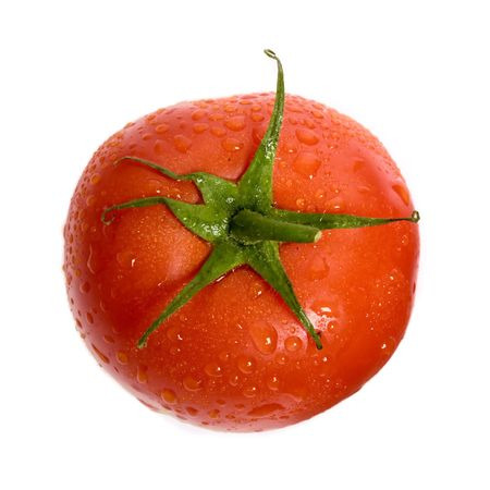 dewed: The close up view of dewed tomato