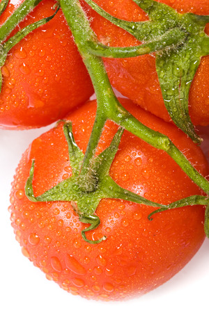 dewed: The close-up view of the dewed tomato
