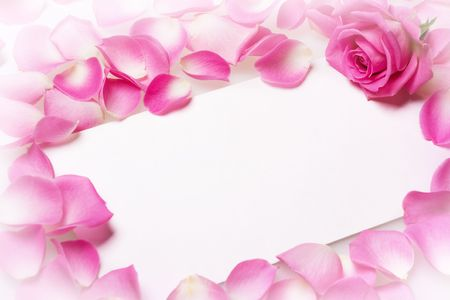 Close up view of the letter covered rose petals photo