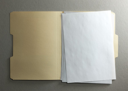 manila: Manila file folder on background