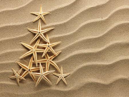 etoile de mer: Arbre de Noël à partir de coquilles sur le sable