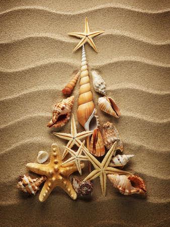 tropisch: Weihnachtsbaum von Muscheln auf Sand Lizenzfreie Bilder