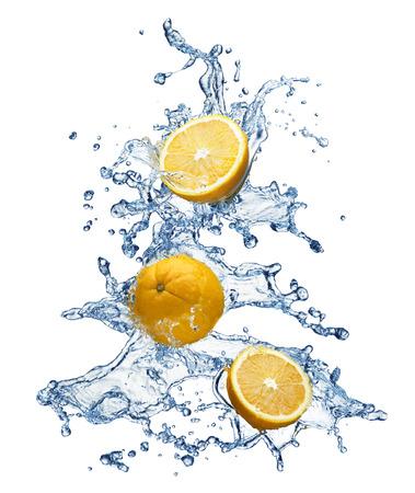 citrus tree: Orange fruit and water splash christmas tree on a white background