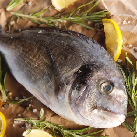 dorado fish: Raw dorado fish with rosemary and sea salt server on old paper
