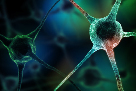 neurone: Realistic rendering of neurone  on the green background