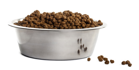 brim: Dog bowl with croquettes full to the brim, isolated on white
